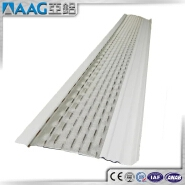 New Design and High Quality Rain Gutter Guard