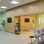 Anti-microbial Hospital custom compact laminate hpl interior wall cladding