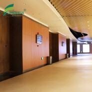 Waterproof interior wood color hpl compact laminate sheet for wall cladding and shower walls panels