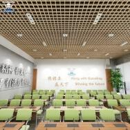Foshan Langtai Building Materials Co., Ltd. Aluminium Strip Ceiling