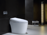 Us-asia integrated intelligent toilet seat (silver zhixuan)