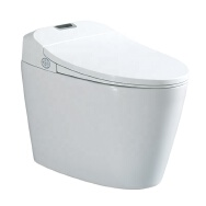 Aiying Lihua Intelligent Electric (Zhuhai) Co., Ltd. Toilets