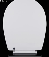 New Toilet Fitting Soft Close Toilet Seat