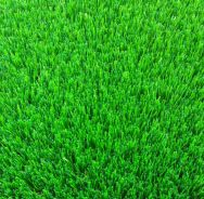 Shandong Green Land Grass Co., Ltd. Artificial Grass