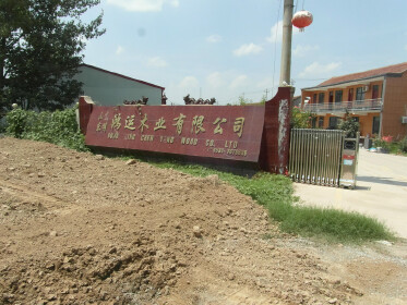 Dongming Hongyun Wood Co., Ltd.
