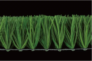 CCGrass Artificial Grass