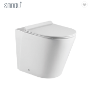 Cheap floor standing ceramic washdown back to wall toilet for home bathroom