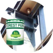 Anti Rust Steel Structure Fireproof Paint Fireproof coating