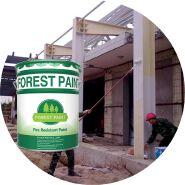 fire retardant paint,Paint fire retardant for intumescent paint, fire retardant paint lowes