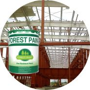 Fire Retardant Intumescent Paint for Steel Structure/Metal