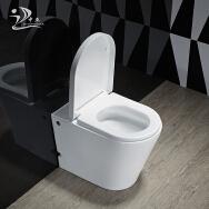Guangdong Zhongya Sanitary Ware Technology Co., Ltd. Toilets
