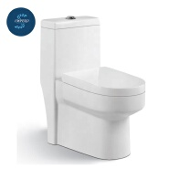 Guangdong manufacturers supply japanese toilet
