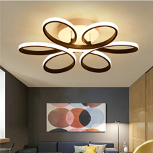 Modern iron Decorative Led indoor Ceiling Lights for Living Room