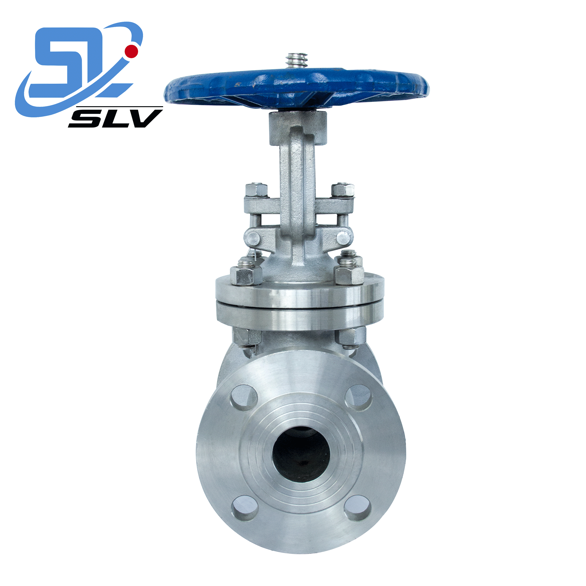 Anti-corrosive Stainless Steel Flange