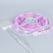 Banqcn wifi music smart RGBWW SMD5050+2835+2835 IP65 LED Strip Lights Kit 2M