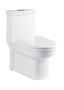 Modern Washroom European Standard sanitary ware Peeping Chinese toilet One Piece Toilet Commode