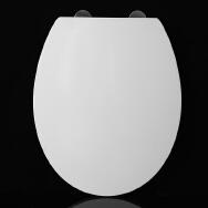 Chaozhou Chaoan Dengtang Jinyouyuan Sanitary Ware Manufacturer Toilet Seat Cover