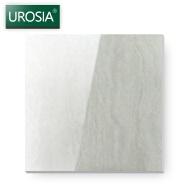 Foshan Jiasheng Trade Co., Ltd. Polished Tiles
