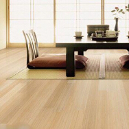 Changzhou GING Imp & Exp Trading Co., Ltd. Strand woven Bamboo Flooring