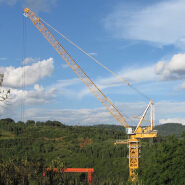 New brand of Luffing tower crane D230 for sale, 55m boom length, 2.3t jib end load