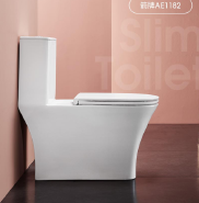 ARROW One Piece Cleaner Bottle Sanitary Ware Toilet  AE1182