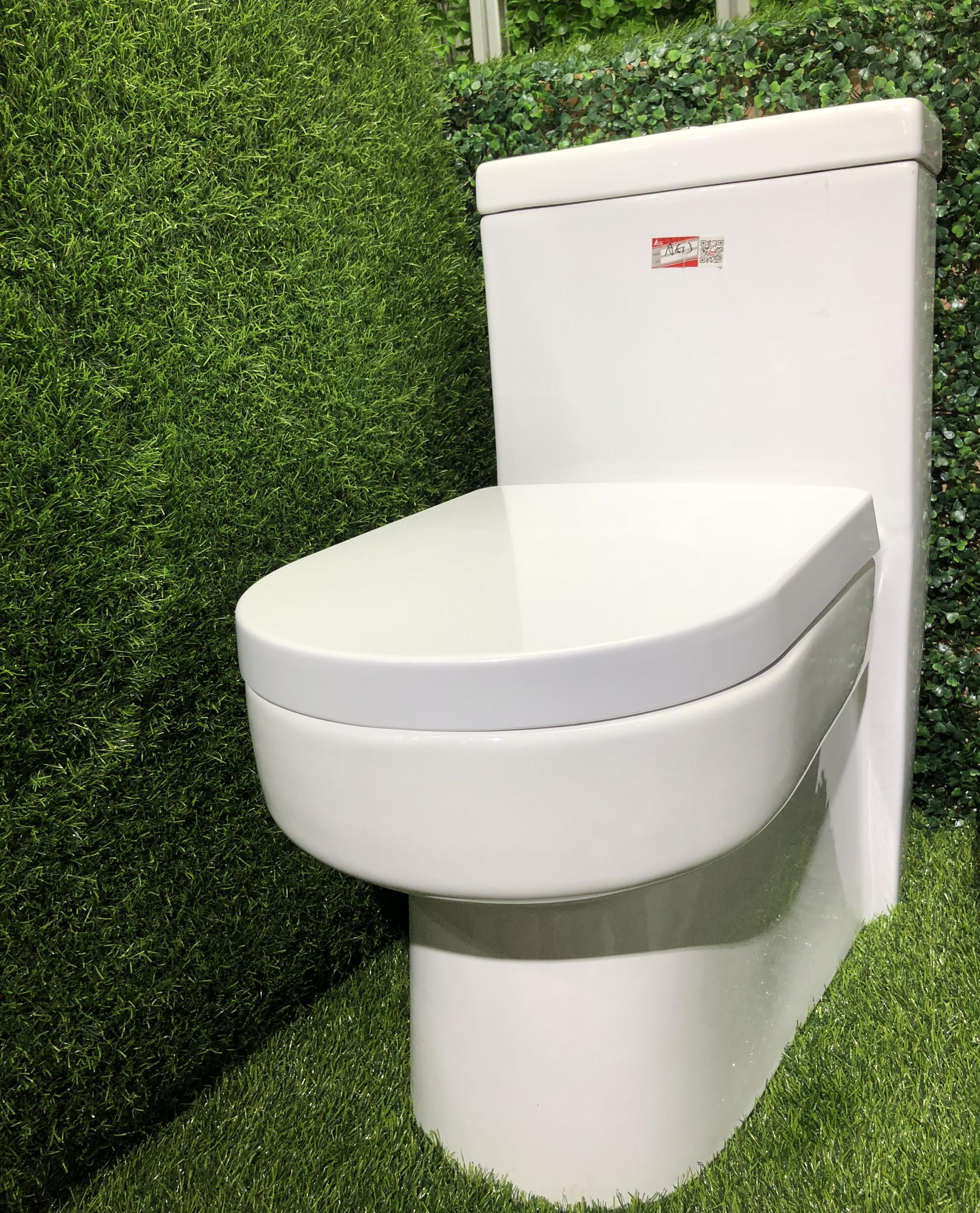 A-6813 ceramic toilet sanitary ware wc toilets one piece closet popular toilets