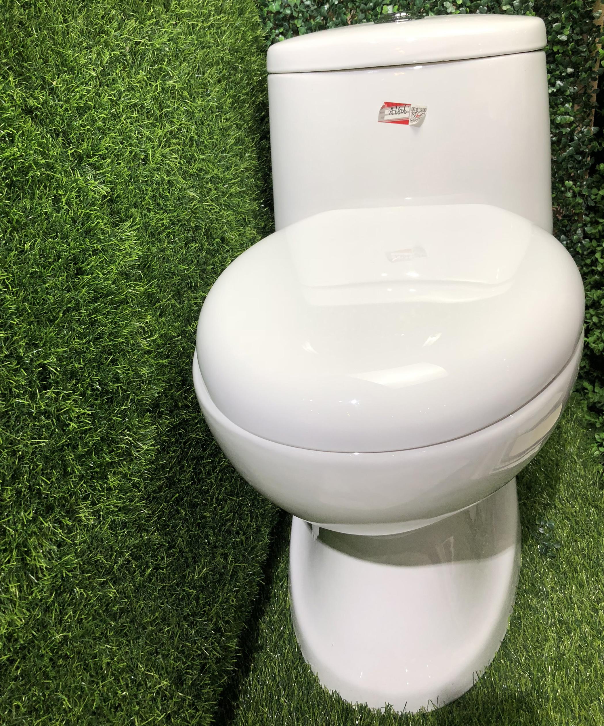 A-6806 Cheap cycle flushing toilet Ceramic toilet WC Toilet
