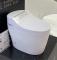 ARROW brand Washdown Ceramic Auto Bidet One Piece Cleaner Bottle Bowl Smart Toilet WC Sanitary Ware