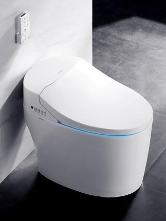 ARROW brand ceramic sanitary ware automatic wc smart toilet intelligent price