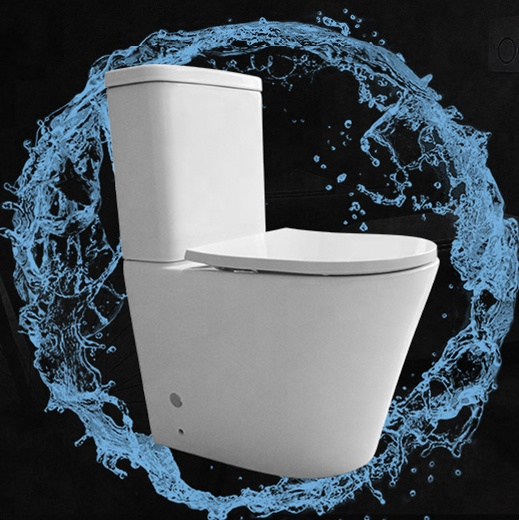 RIMLESS FLOOR BACK TO WALL WELS AUSTRALIA TOILET PART