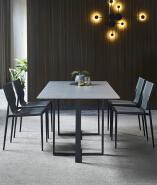 dinining chair 16XHA-101