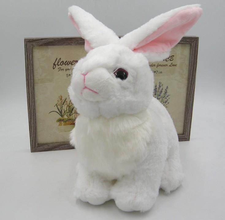 Wholesale Authentic Long Ear Rabbit Plush Toys