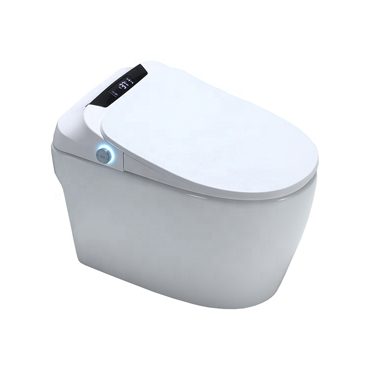 SALA China Factory Direct Sale Bathroom Chinese WC Seat Bidet One Piece Toilet For Sale WC