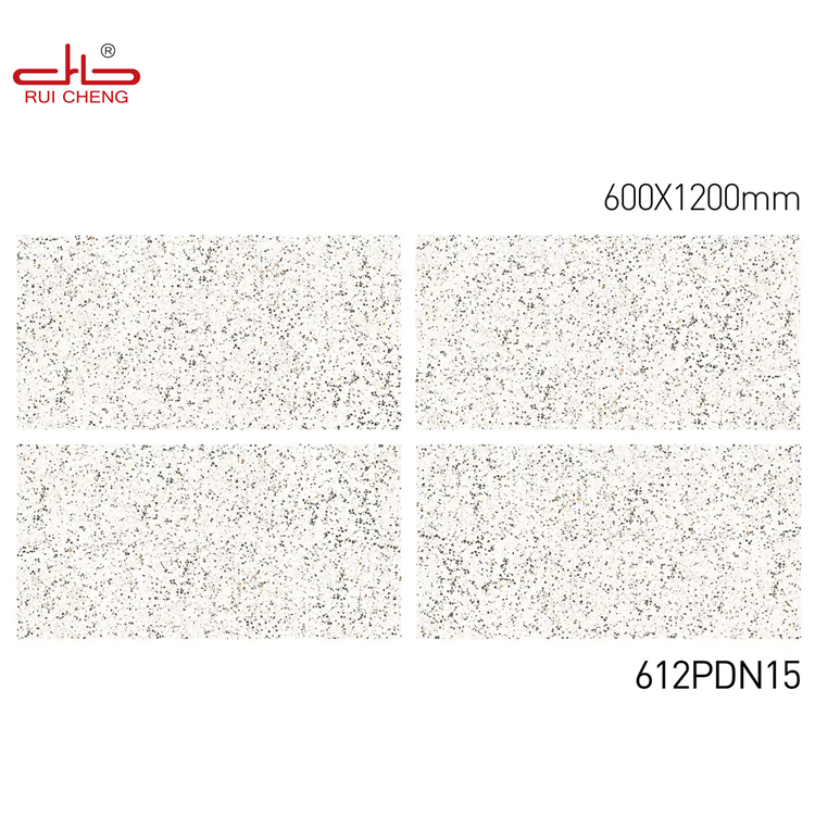 600x1200mm Porcelain Tiles Interior Wall Tile with Low Water Absorption