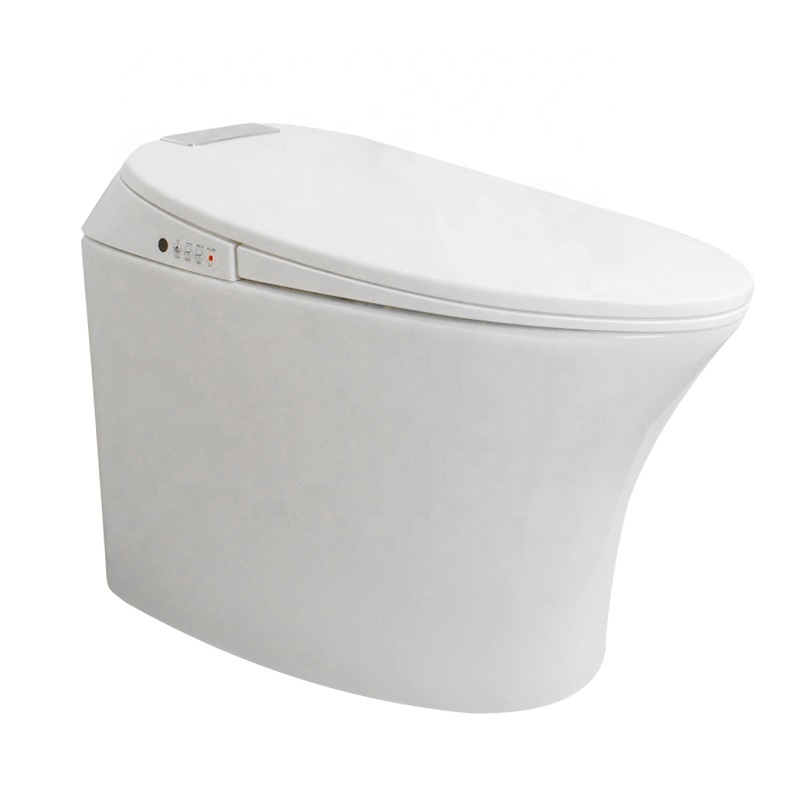 AYZD-T02 One piece ceramic dual flush automatic smart toilet