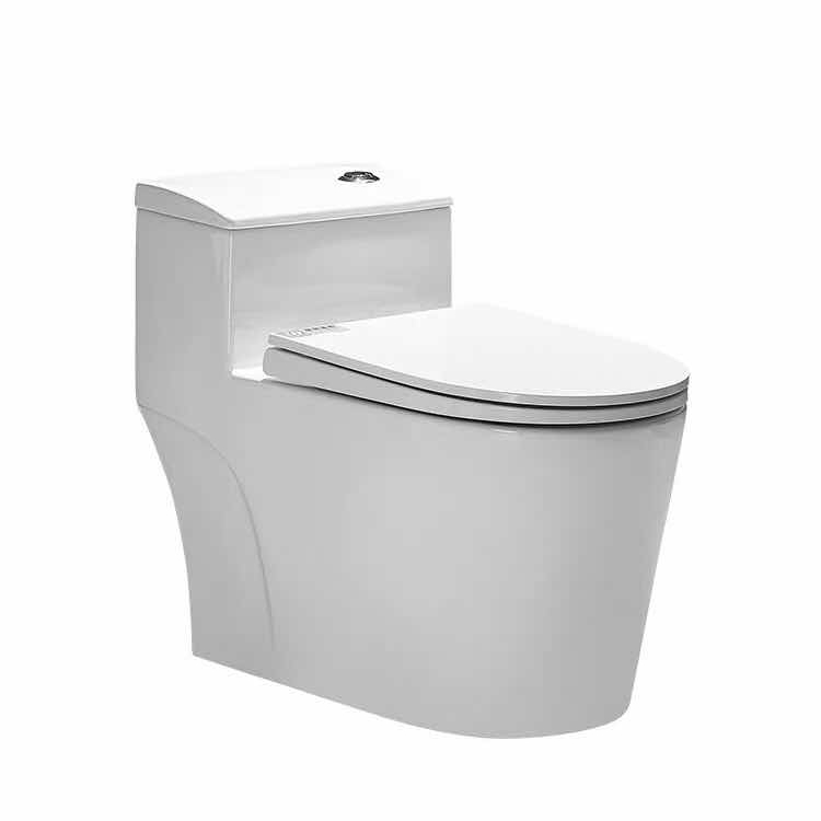 Hot Modern Japanese style siphon flushing washdown toilet seat wc