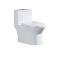 Modern design Good Quality Popular Siphonic S trap One Piece Toilet