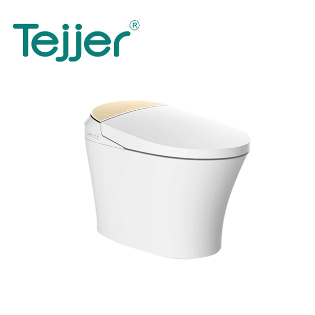 standard Automatic flush one piece tankless electric intelligent smart toilet