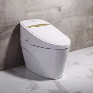Bathroom high quality 1 piece function toilet