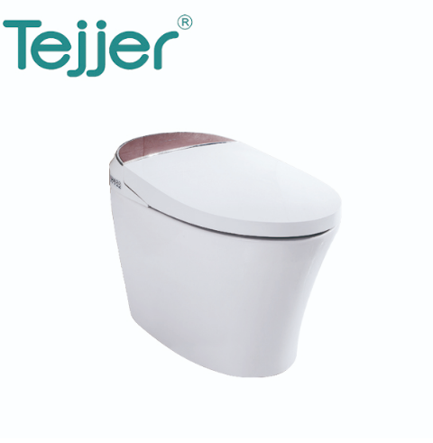Ceramics floor mounted auto washing cleaning wc high-quality popular design smart intelligent electronic toilet with bidet