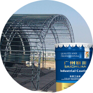 Direct factory price excellent quality Intumescent fireproof paint for steel structure
