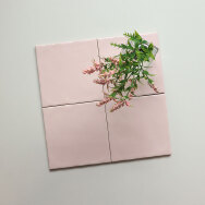 Foshan Zhenglian Ceramic Co., Ltd. Ceramic Chip