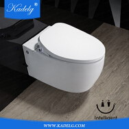 Luoyang Meidiya Ceramics Co., Ltd. Toilets