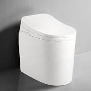 Guangdong Huaxia Ceramic Technology Co., Ltd. Toilets