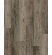 Jiaxing Gold Lion Decoration Material Co., Ltd. SPC Flooring