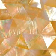 Foshan Foto Ceramics Co., Ltd. Shell Mosaic