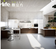 Guangdong Suke Pate Sanitary Technology Co., Ltd. Lacquer Cabinet