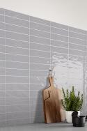 Sir Rex josh ceramics Interior Wall Tile