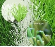 Yangzhou Lvbao Artificial Turf Co., Ltd. Artificial Grass