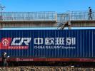 Fourteen new freight train routes open via Xinjiang's Horgos in 2021